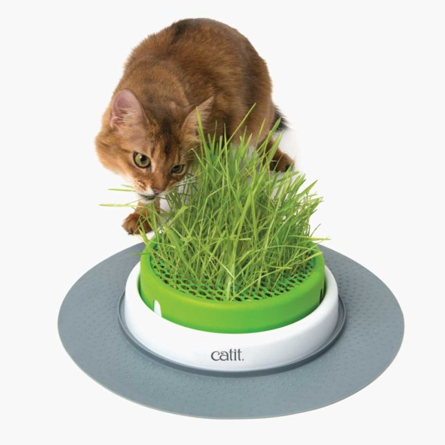 43161W - Senses 2.0 Grass Planter
