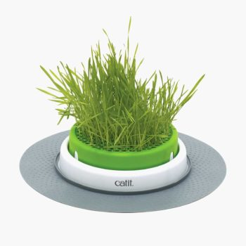 43161W Grass Planter product thumbnail