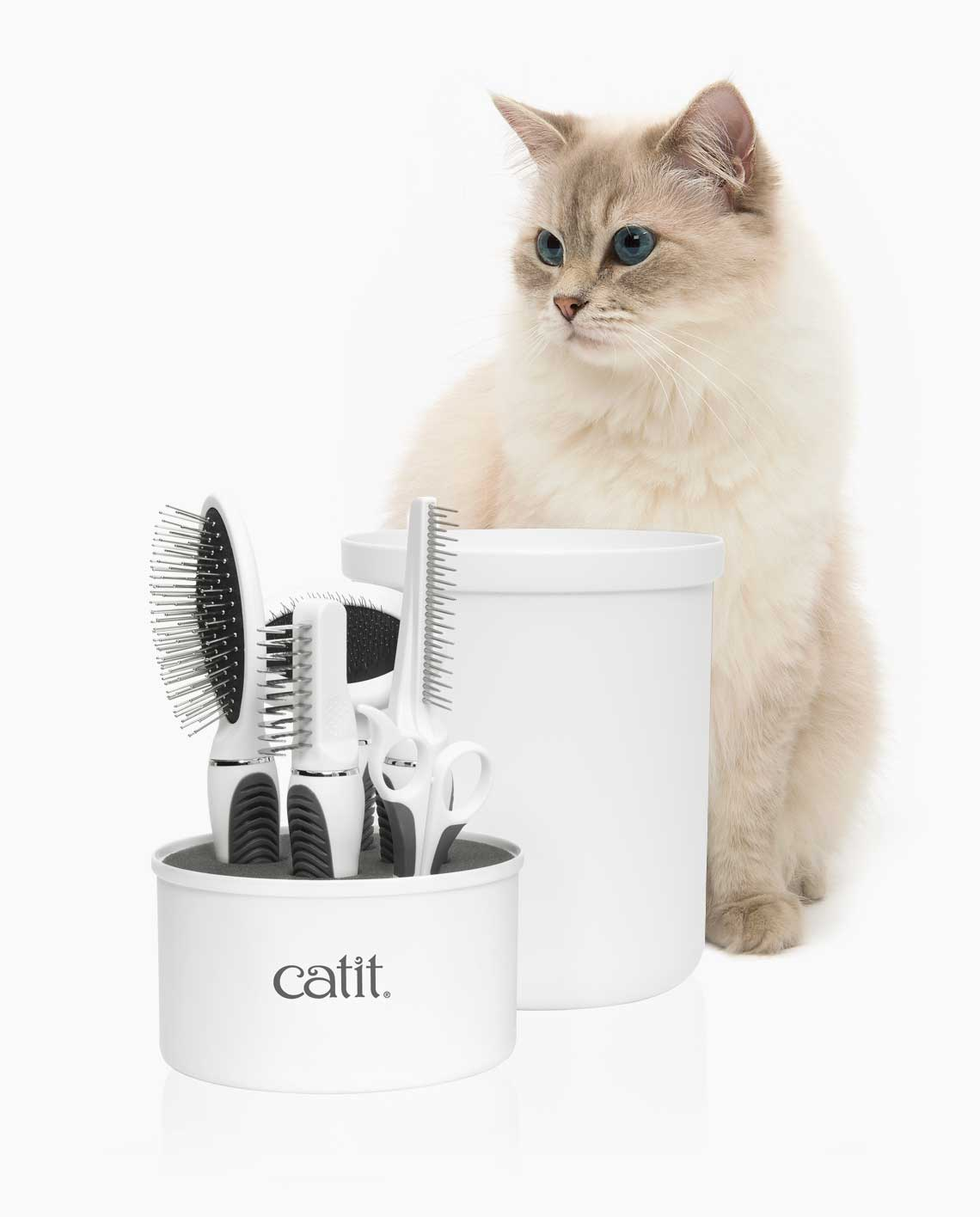 Beautiful Longhaired cat sitting behind Catit Grooming Kit