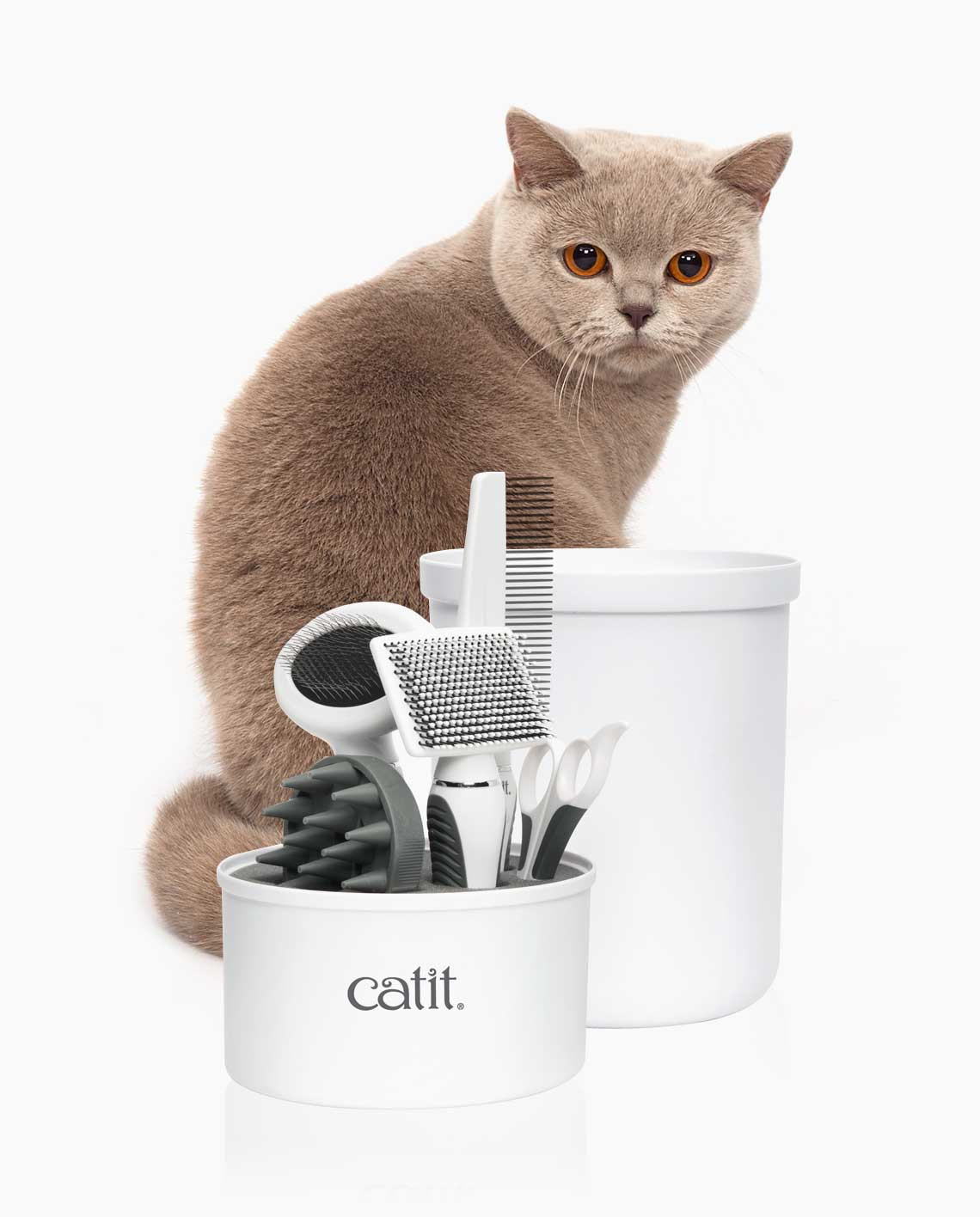 Beautiful Shorthaired Cat behind Catit Grooming Kit