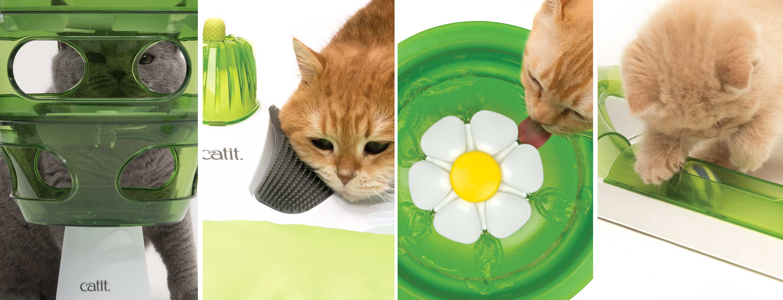 Cute pictures of cats with Catit products