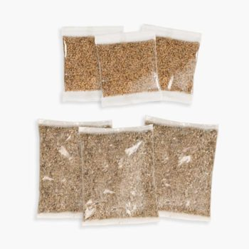 43162W - Senses 2.0 Cat Grass Kit