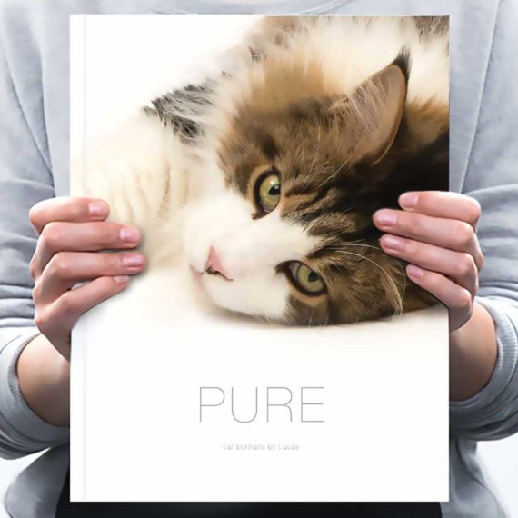 M5047 - Pure Cat Book