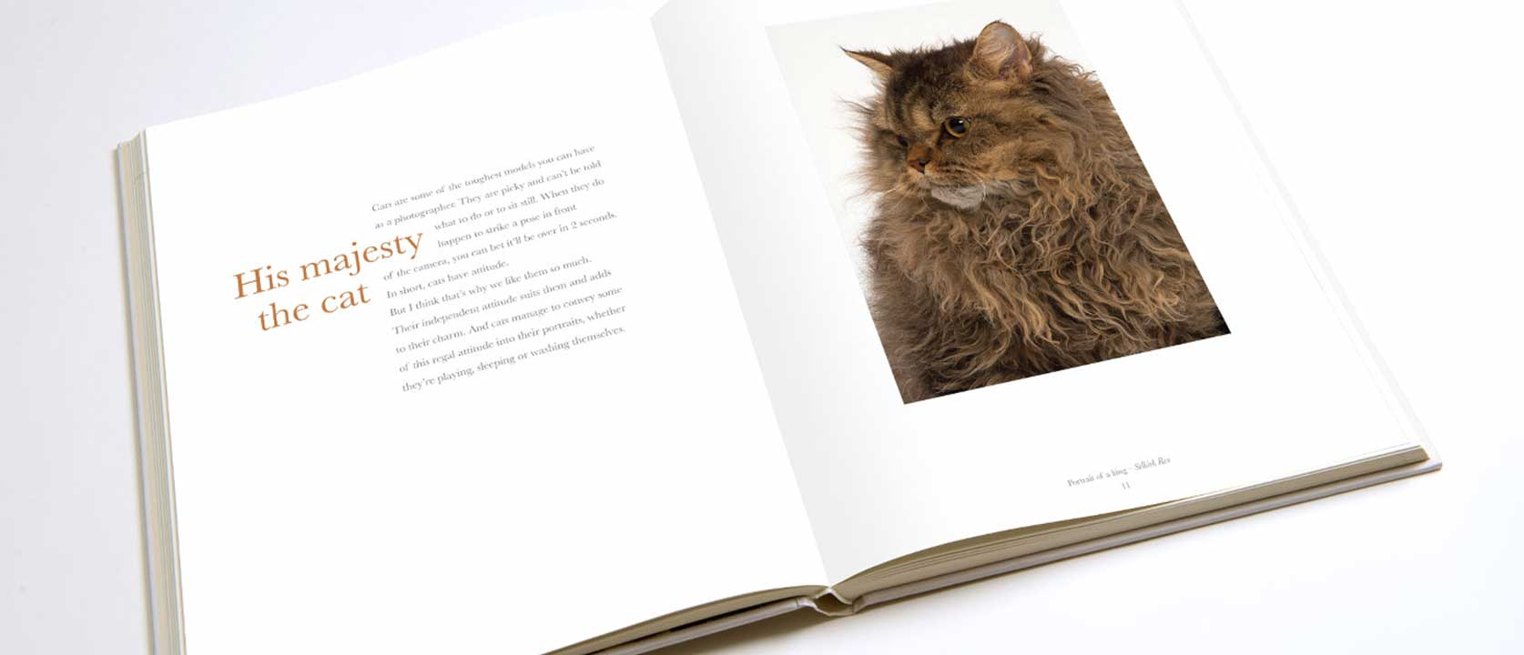 Open Pure Cat Book with text and picture of long haired cat