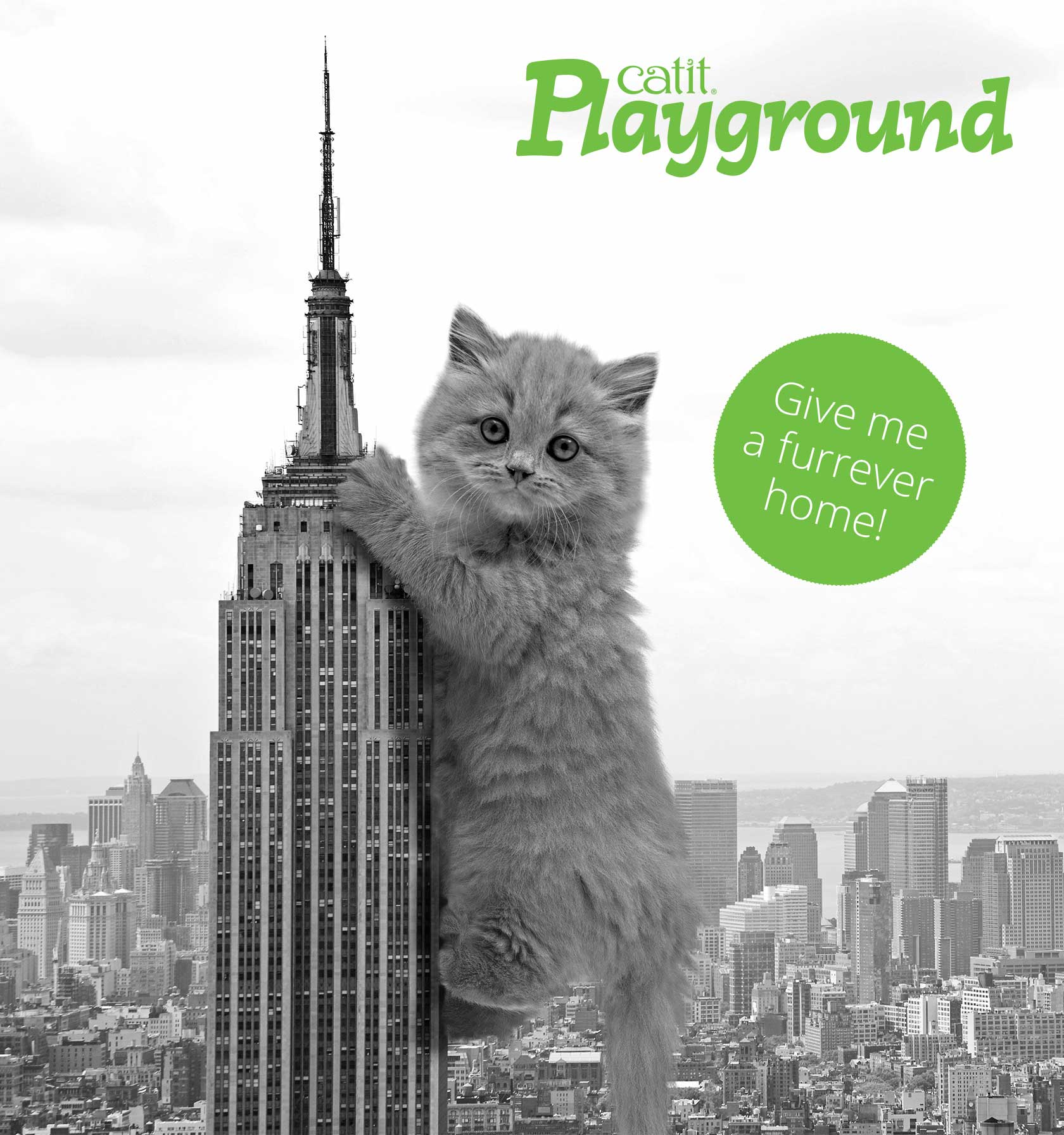 Giant kitten climbing a skyscraper with a city landscape in the background