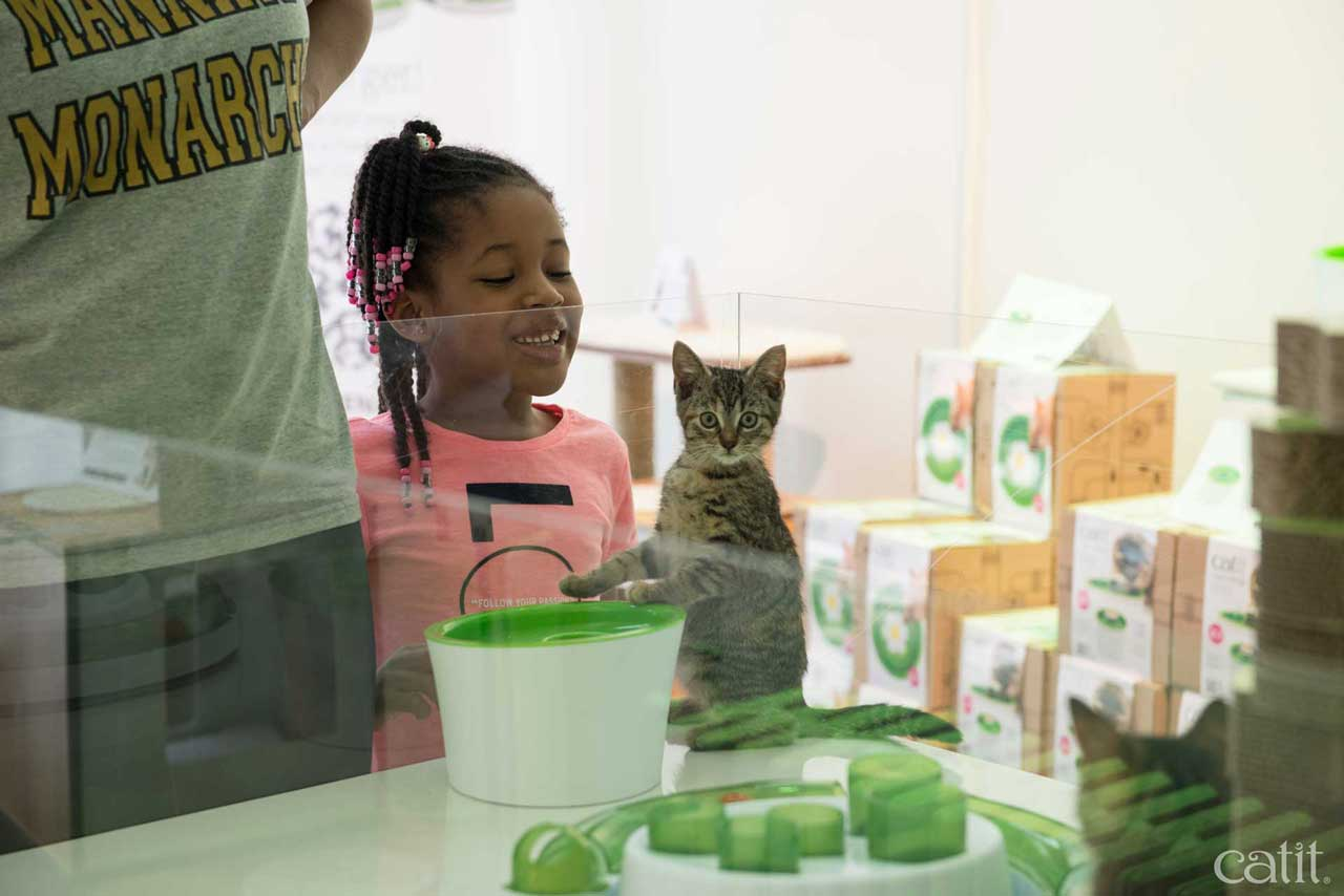 Girl smiling at kitten at Catit Playground NY
