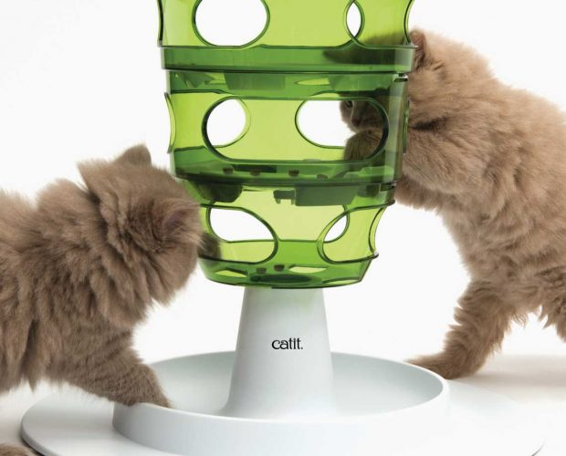 Cute kittens pawing food from the Senses 2.0 Food Tree