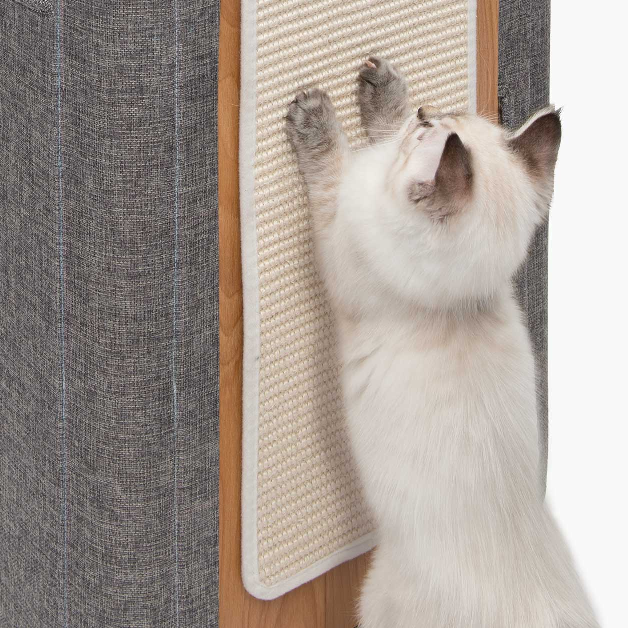 Kitten scratching paws against the sisal scratching mat of the Vesper Cubo Tower