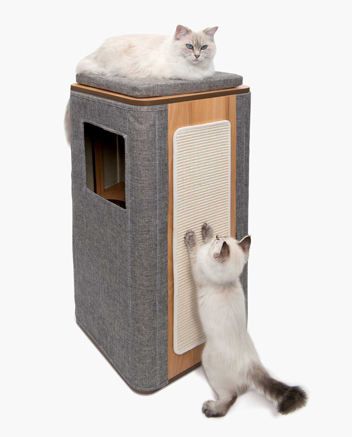 Vesper Cubo Tower with cats on white background