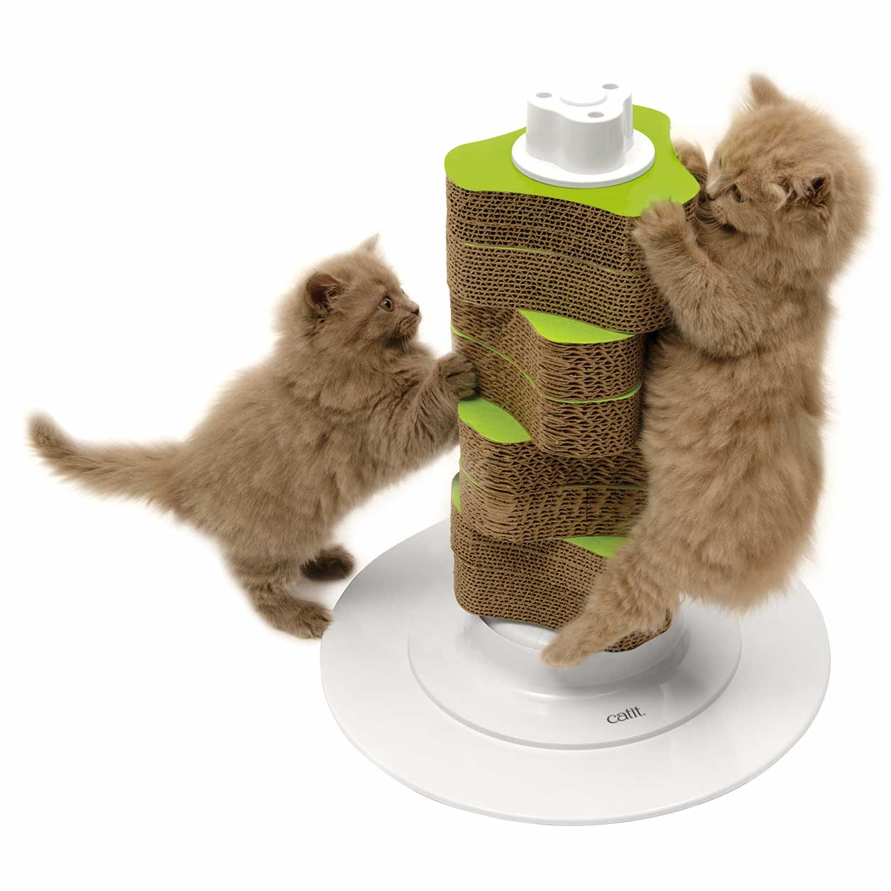 Two kittens scratching the Senses 2.0 Scratcher