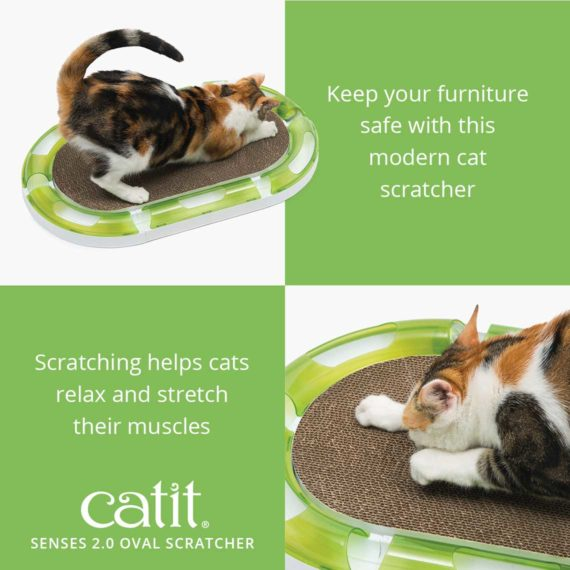 43170 Oval Scratcher product 2