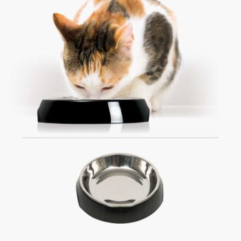 43871 - Feeding Dish Single Black