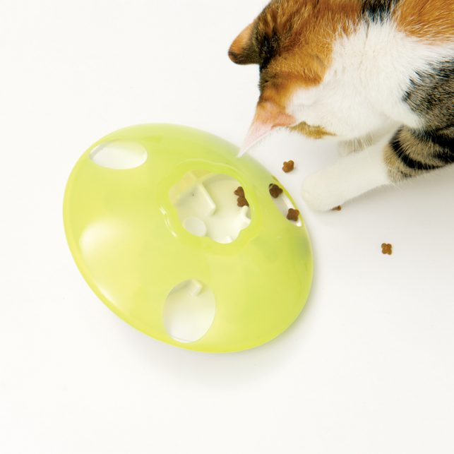 Cat playing with the treat spinner