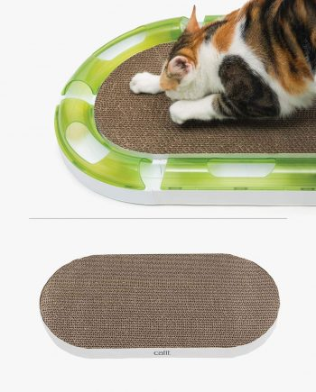 Pixi scratching from a oval scratcher