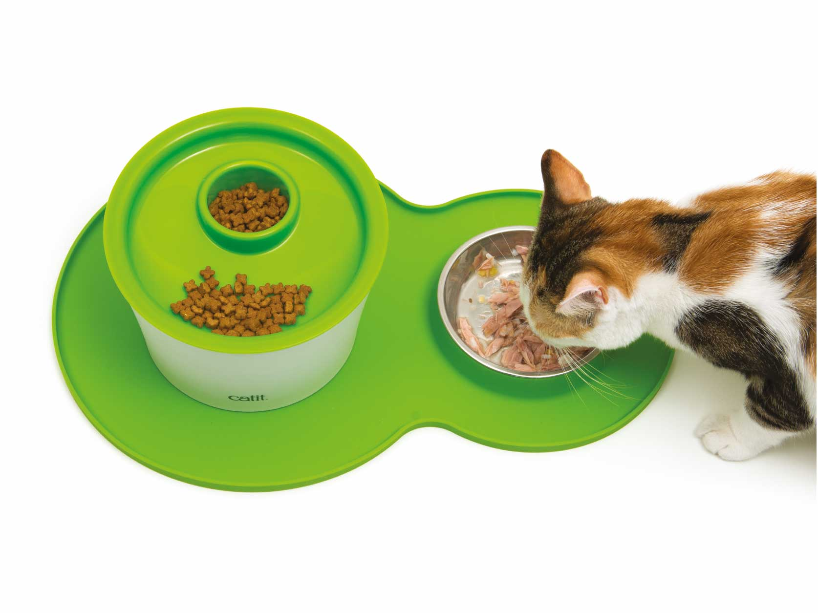 Pixi eating from peanut placemat withmultifeeder