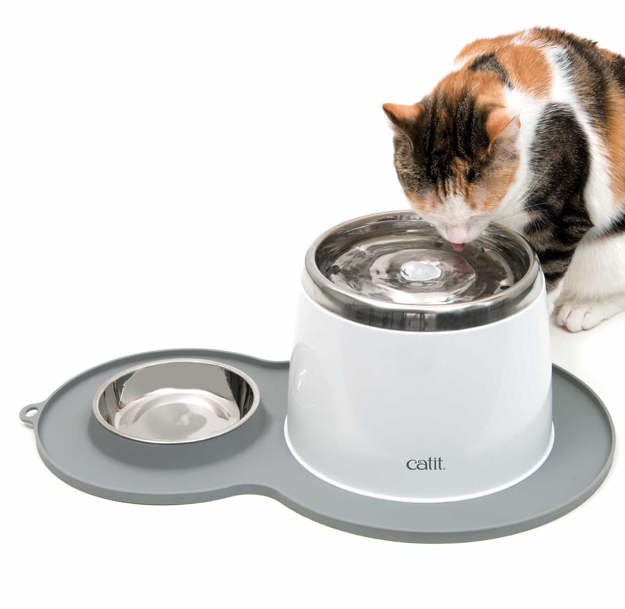 Pixi using her stainless steel drinking fountain on the peanut placemat