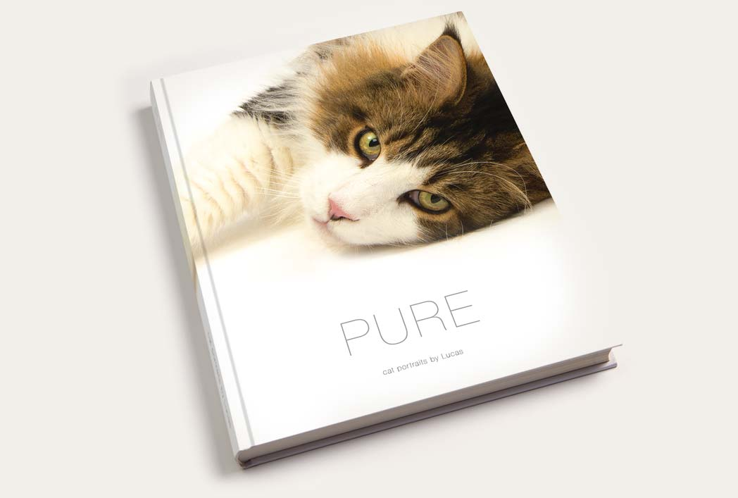 Pure cat book is the perfect gift