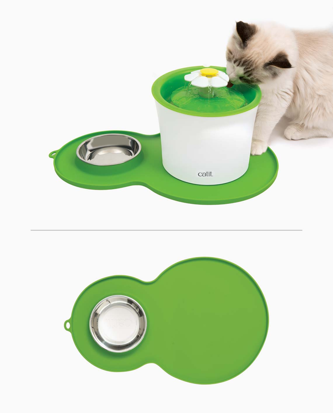 Cute cat drinking from a flower fountain on a peanute placemat