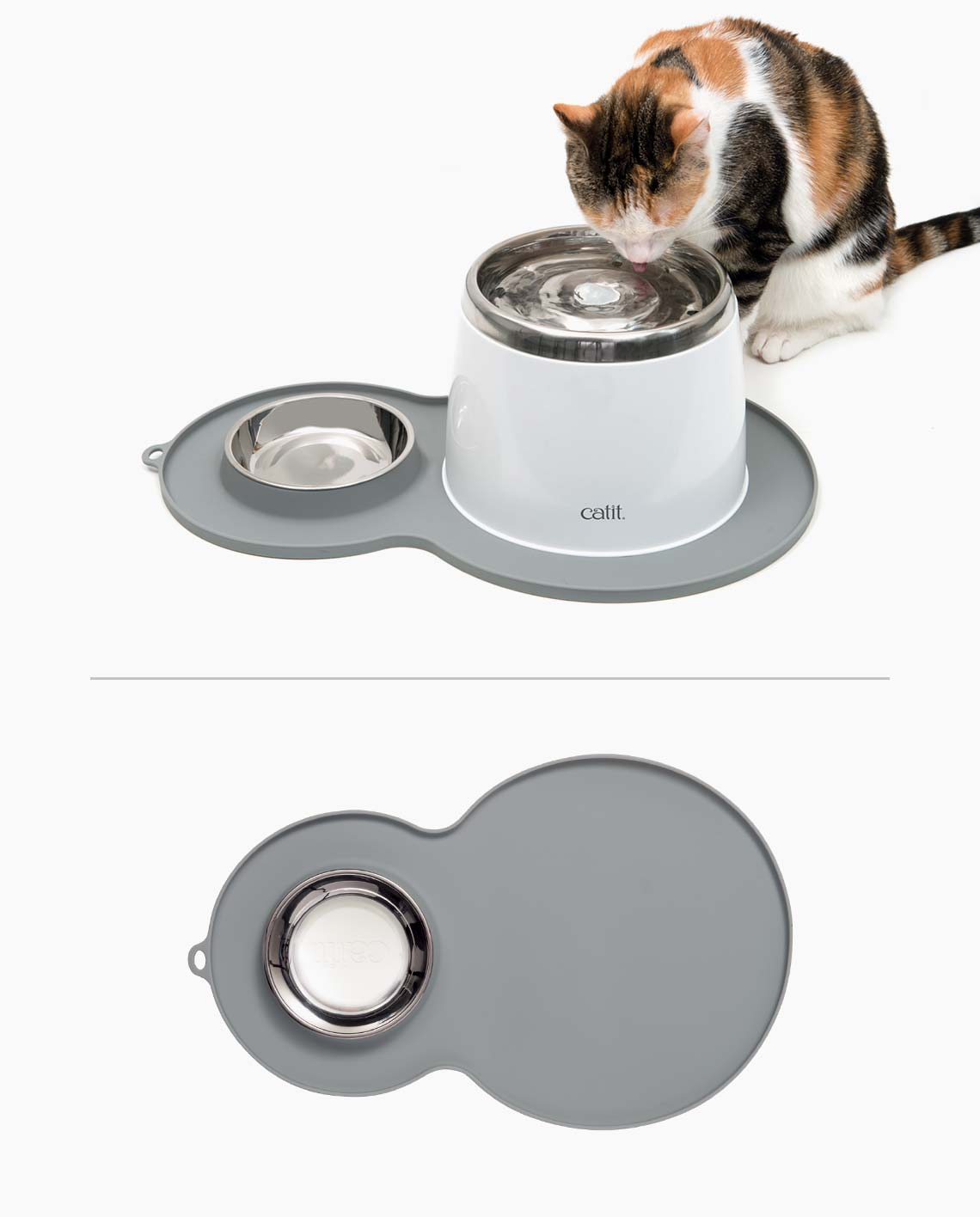 Pixi drinking from a stainless steel drinking fountain