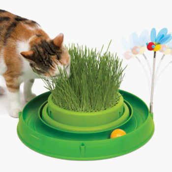 43002 - Circuit Ball Toy with Grass Planter copy