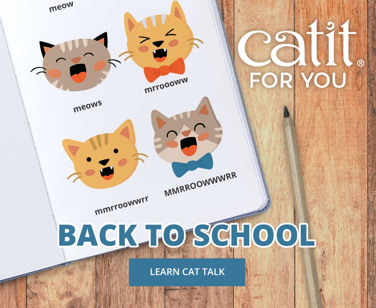 Catit For You-Back to school-learn cat talk