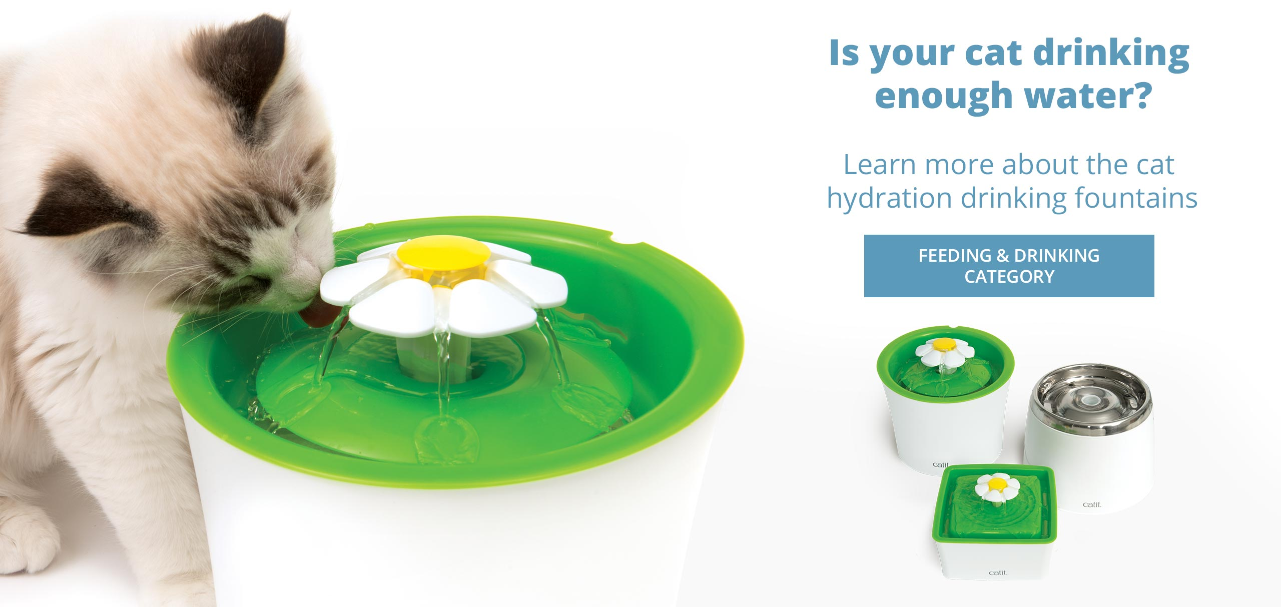 Learn more about the cat hydration drinking fountains-update