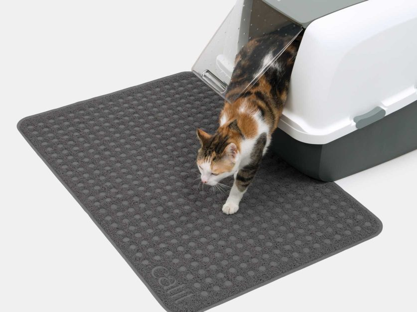 Catit Litter Mat will keep the floor free of cat litter