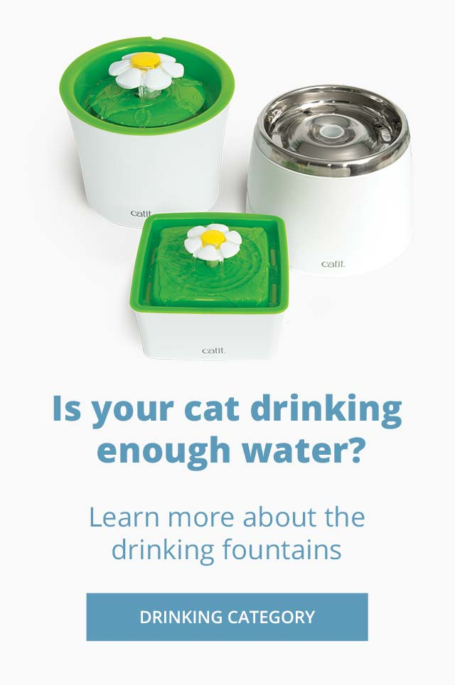 Is your cat drinking enough water? - Check our drinking fountains