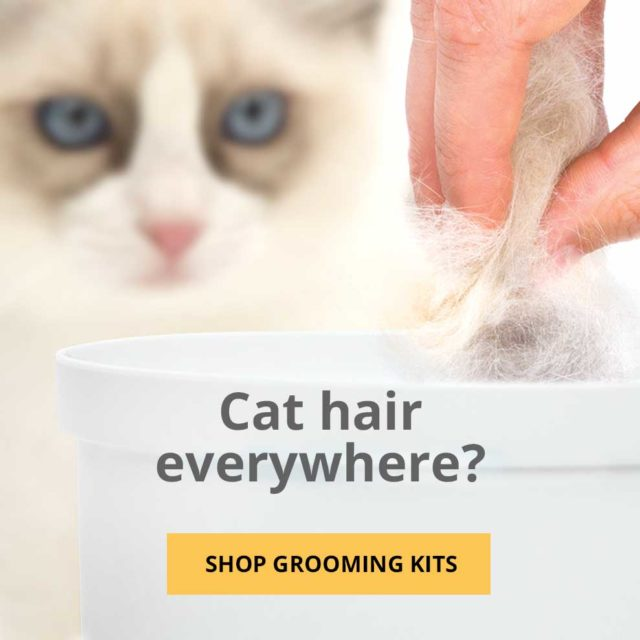 Cat hair everywhere - shop grooming kits - mobile
