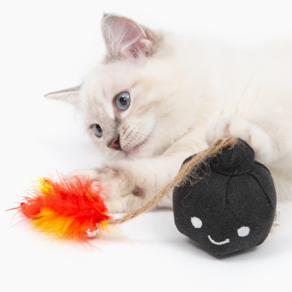 Pirates - Catnip Toy - Bomb C