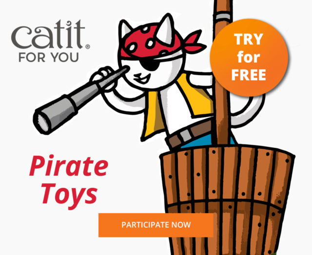 Try For Free Pirate Toys2