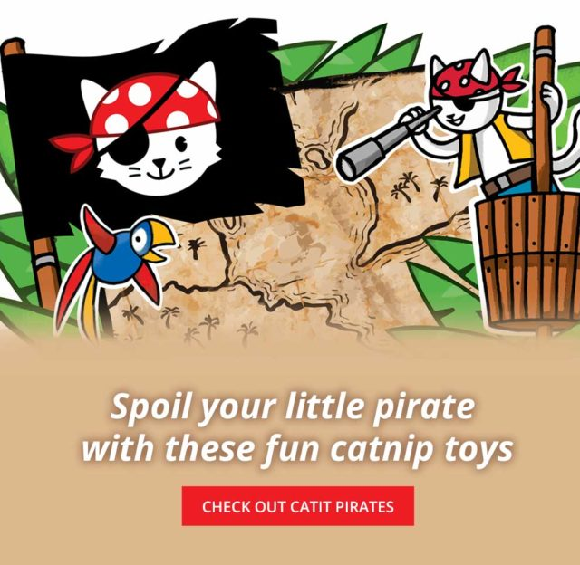 Spoil your little pirate - check out catnip pirates