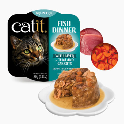 fish dinner - tuna and carrot