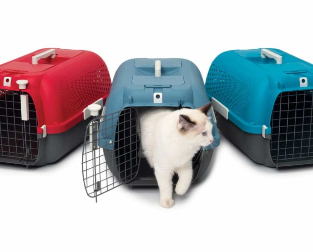 Catit Cat Carrier getting started cover picture