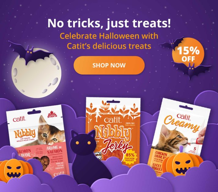 No tricks, just treats! Celebrate Halloween with Cati's delicious treats - shop now