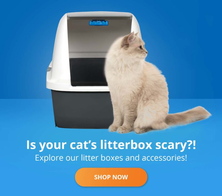 Is you cat's litterbox scary?! Explore our litter boxes and accessories!