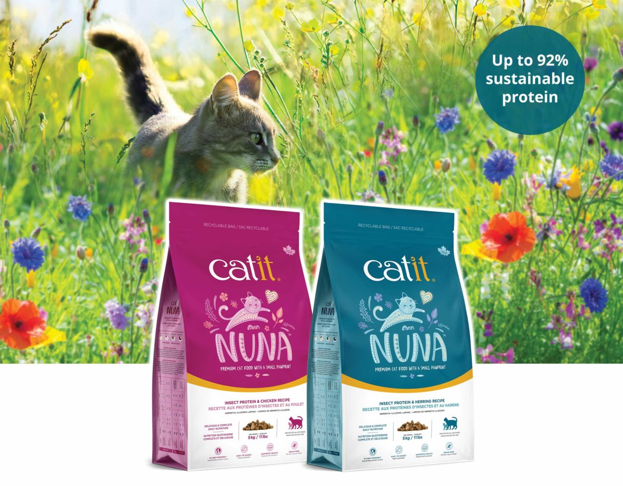 Nuna insect-based cat food - Cat in grass field